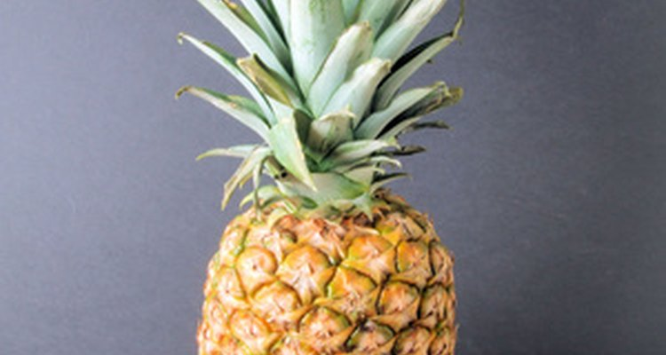 Las plantas de piña pueden tardar hasta dos años en dar fruto.