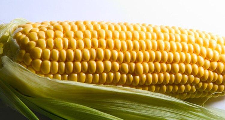Você pode aquecer o sabugo de milho congelado da mesma maneira que cozinha os frescos, embora isso leve mais tempo