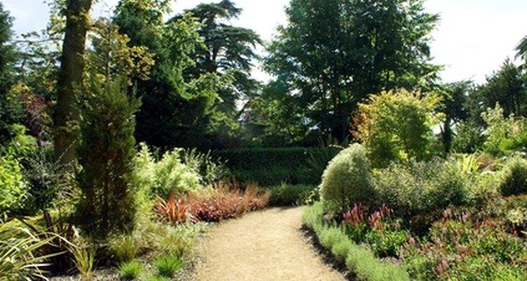 Cubra as trilhas do jardim com serragem
