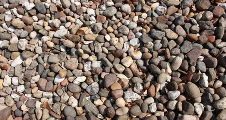 You can identify most common pebbles.