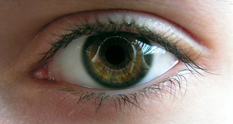 Puedes ver las imágenes como si estuvieras mirando a través de un caleidoscopio.