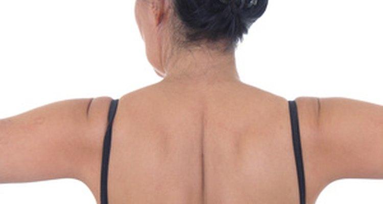 O trapézio é encontrado na parte superior das costas