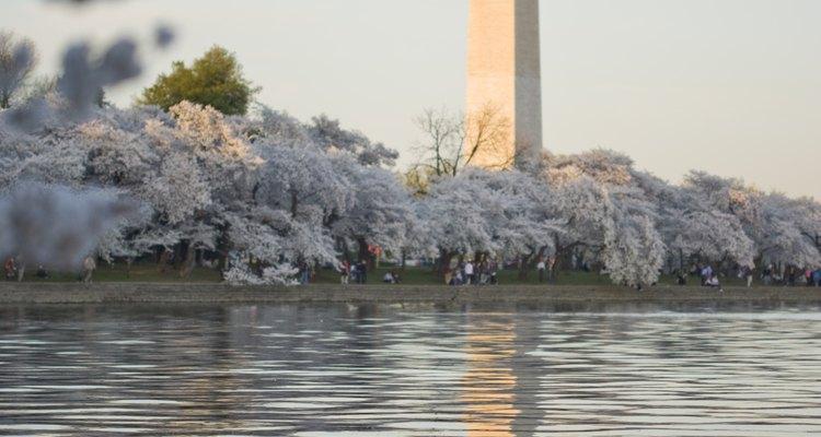 O Washington Monument é um exemplo moderno da arquitetura geométrica clássica.