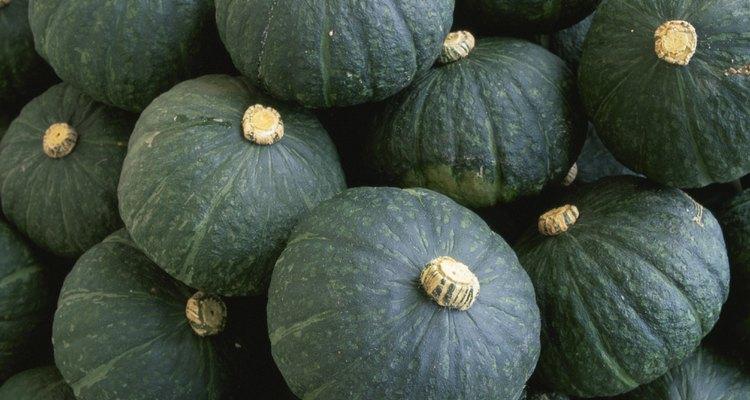Full frame of Kabocha (Japanese Pumpkin)