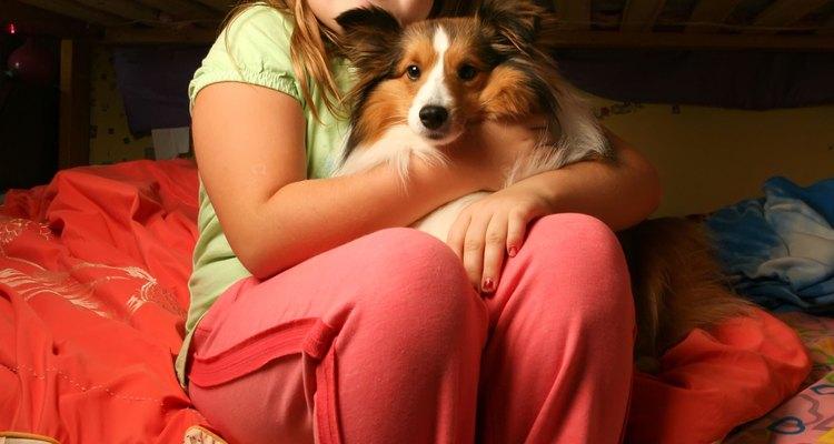Garota sentada com cachorro