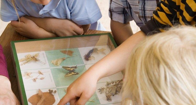 Jogos de descrever objetos ajudam os estudantes  a construírem seus vocabulários