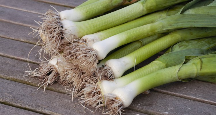 green leeks with roots