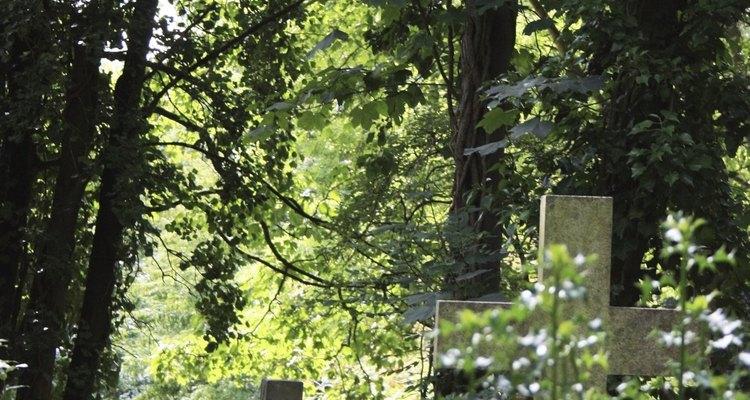 El cementerio se funde con el bosque en algunos puntos.