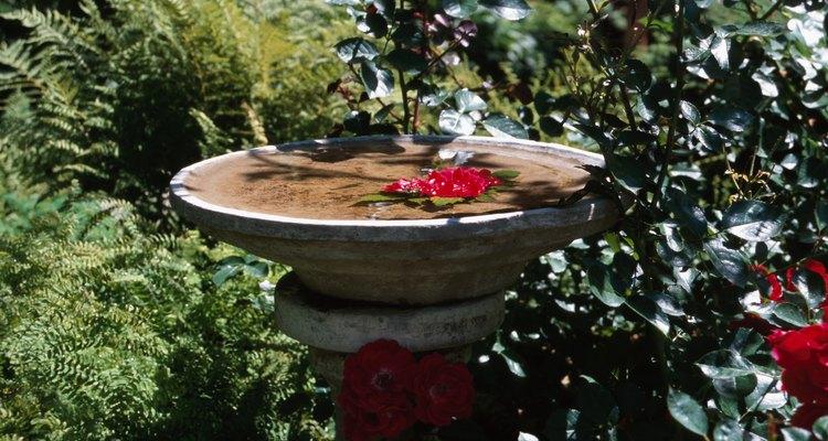 Faça uma fonte para embelezar seu jardim e dar um local de banho aos pássaros