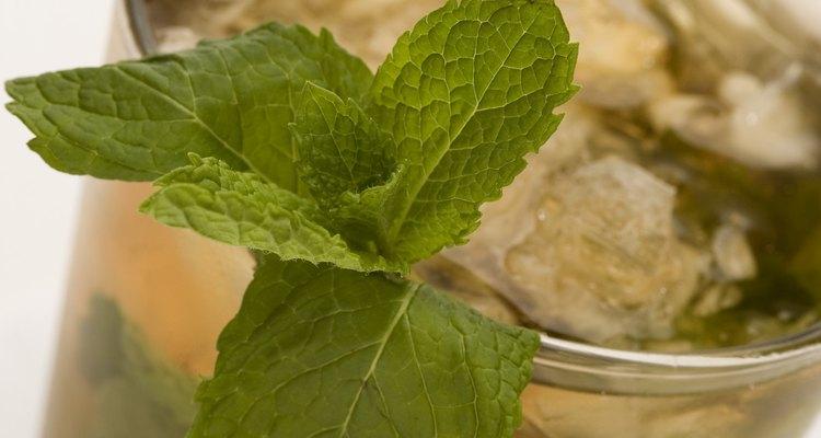 El té de menta ha ganado algo de popularidad como un diurético suave.