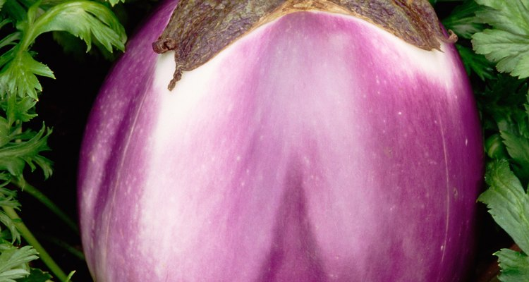 Aubergine is the word for eggplant in some countries.