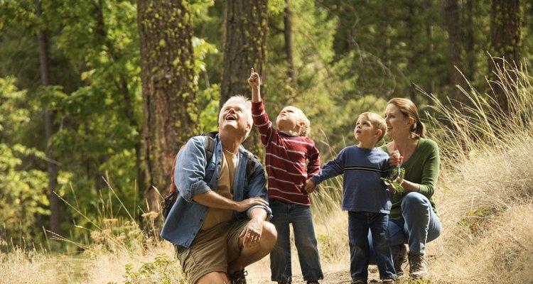 Las sucursales locales de organizaciones de vida silvestre ayudan a las familias a explorar el aire libre durante eventos especiales.