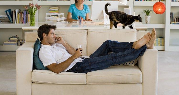 A prisão de ventre ou constipação felina afeta gatos de qualquer idade e tamanho