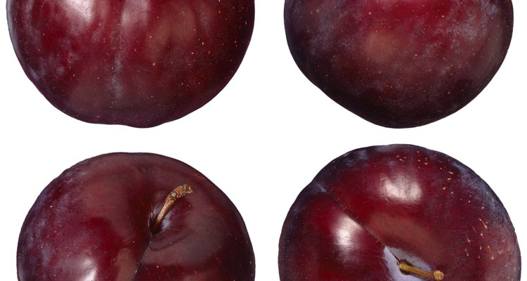 Plum tree fruits pass through several growth stages.
