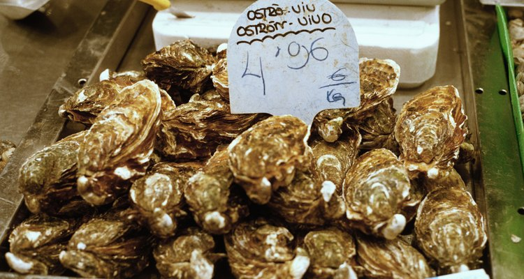 Close-up of oysters in a market in Barcelona