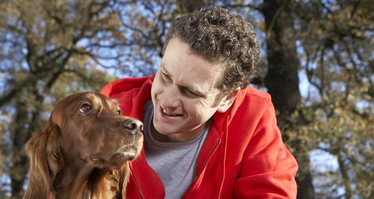 Man stroking dog, close-up