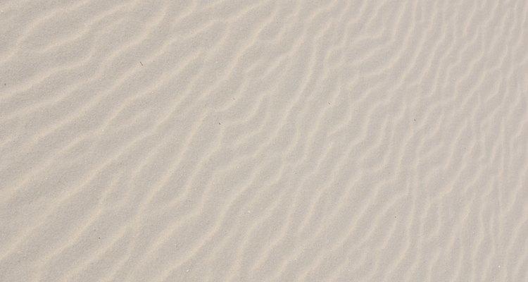 Buscarlas en la arena es divertido.