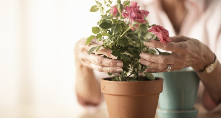 Use glues intended for porous surfaces when working with flowerpots.