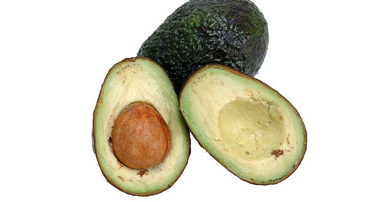 Cultive um abacateiro a partir da semente de seu fruto