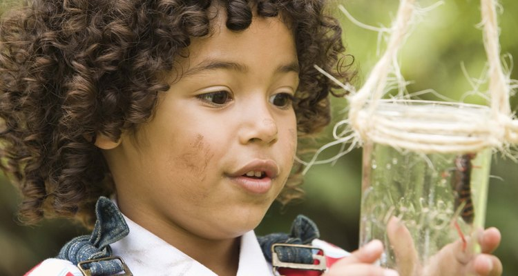 Easily cut a little boy's curly hair with the right approach, tools and technique.