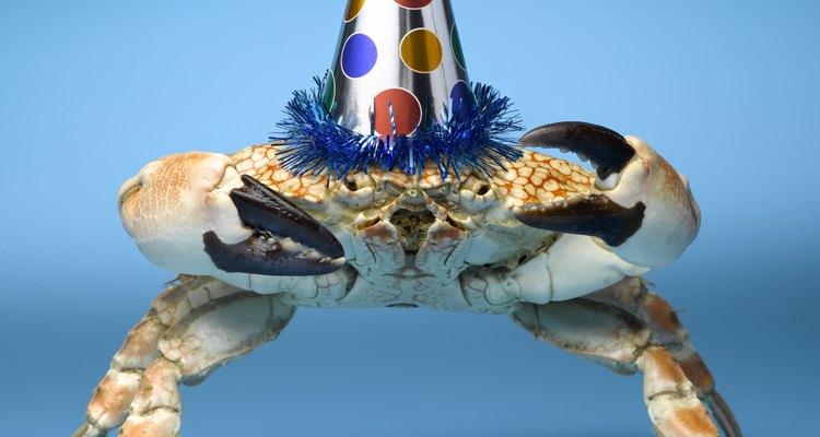 Os caranguejos do manguezal gostam de se divertir à noite, já que são mais ativos nesse período do que durante o dia