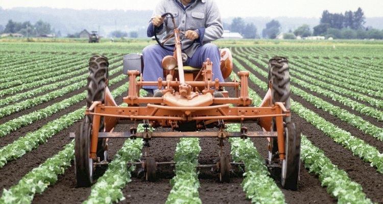 Un granjero en un tractor con un arado hace filas.