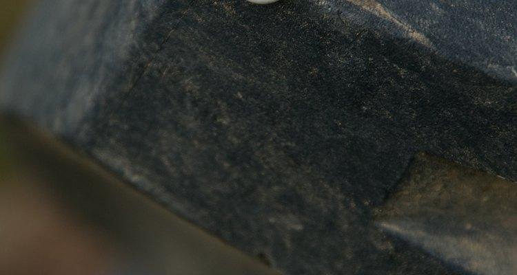 Los caracoles son criaturas bastante extrañas.
