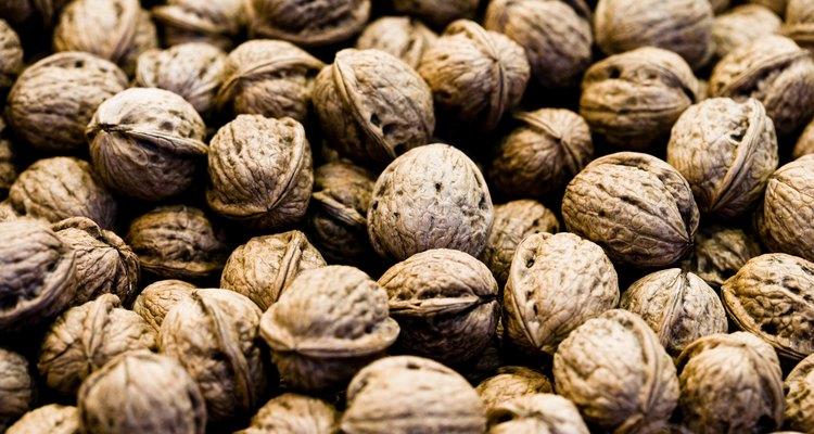 Las nueces son fáciles de crecer pero difíciles para germinar.