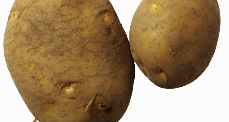 Note the dimple or eyes in the potato -- a new plant can grow from these.