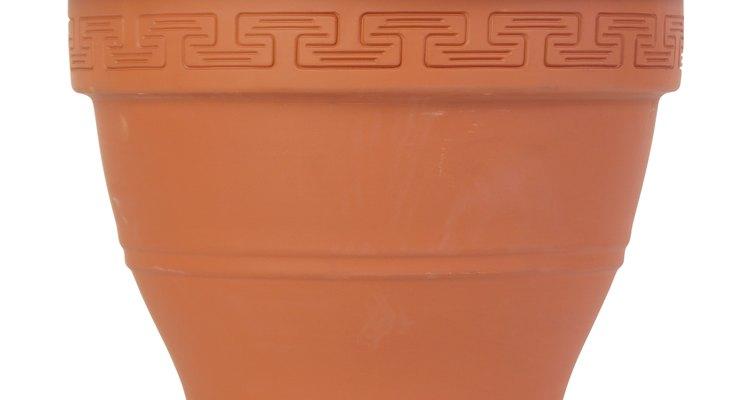 La arcilla de terracota es una opción popular para las macetas.