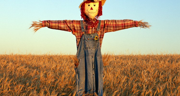 Put your class scarecrow outside so you can see it through a window.