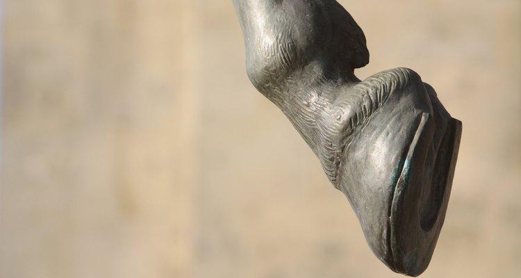El caballo no puede realmente andar en puntillas, aunque pareciera hacerlo.