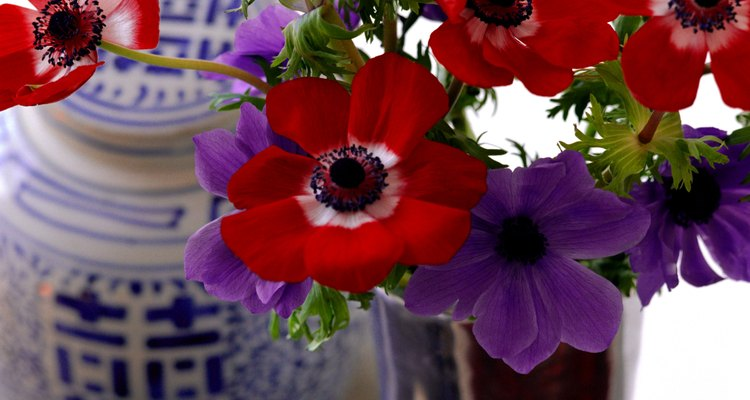 Los arreglos florales otorgan frescura y naturalidad al ambiente.