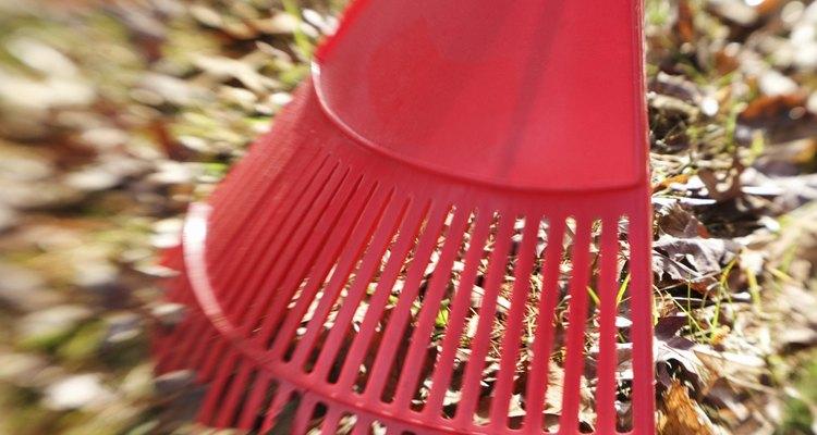 Los rastrilllos para césped pueden recolectar los desechos del jardín.