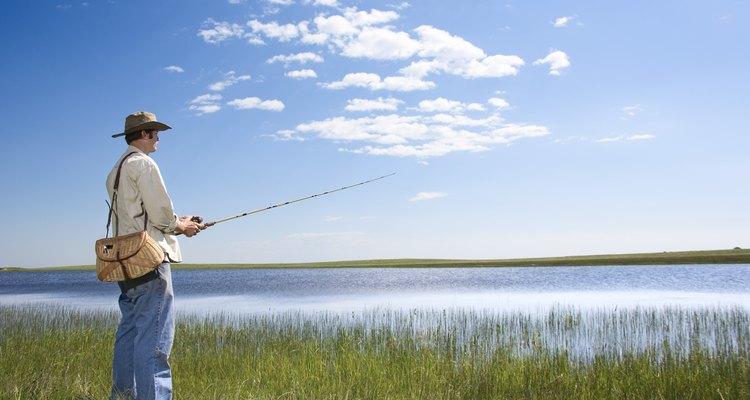 Una licencia no es requerida si eres menor de 16 años o si pescas en estanques o propiedad privada