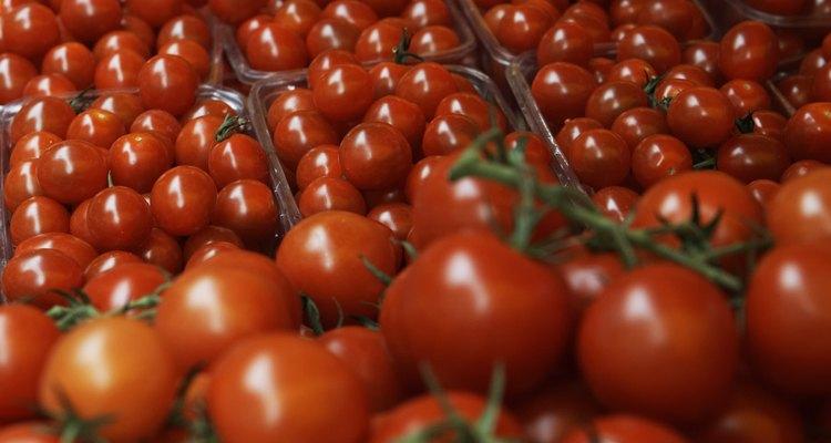Tomates de cultivo hidropónico.
