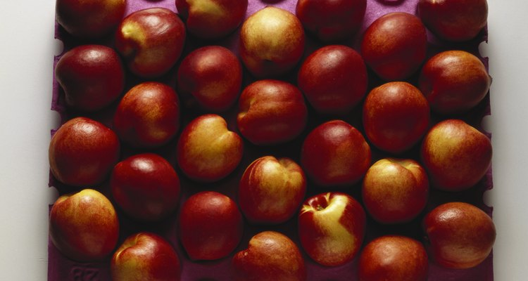 A number of factors could cause yellowing of nectarine leaves - many of these factors also affect fruit yield and quality.