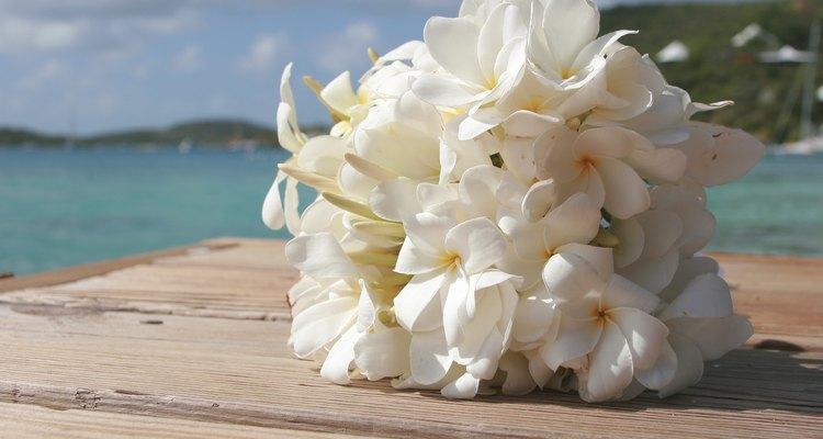 Un ramo de novia tropical hecho de frangipani.