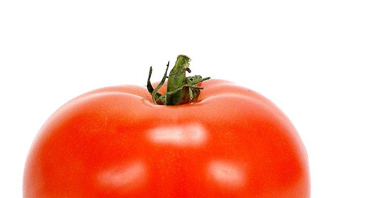 Aprende a diagnosticar problemas en tu planta de tomate.