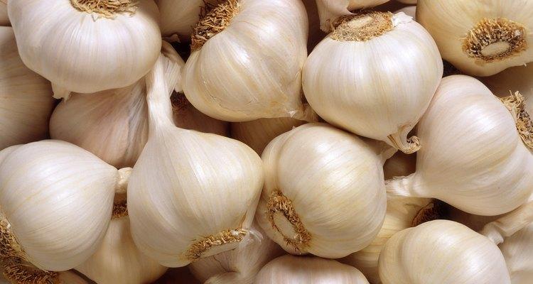Fermentação realça o sabor natural do alho e suas propriedades antioxidantes