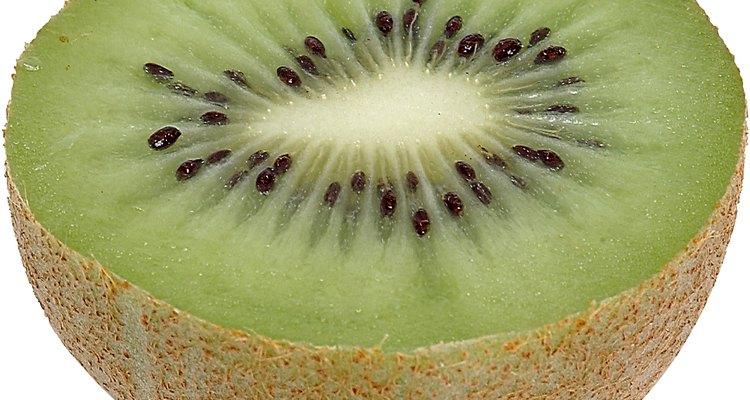 El kiwi puede ser injertado de diferentes maneras. Aquí te detallamos las maneras más empleadas.