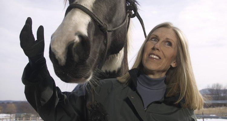 Enseñar a un caballo a acostarse puede ser un método de entrenamiento, pero requiere de confianza.