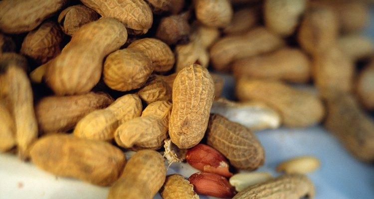 As cascas têm quase tanta utilidade quanto os próprios amendoins