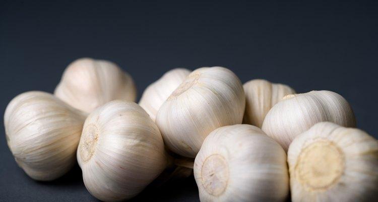Os dentes de alho podem ser esmagados para preparar o extrato