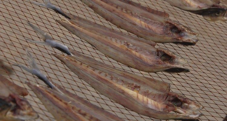 Como secar peixe