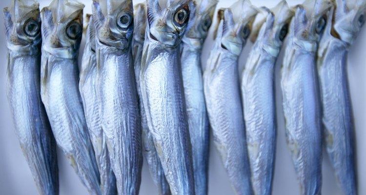 Las sardinas congeladas deben limpiarse antes de cocinarlas.