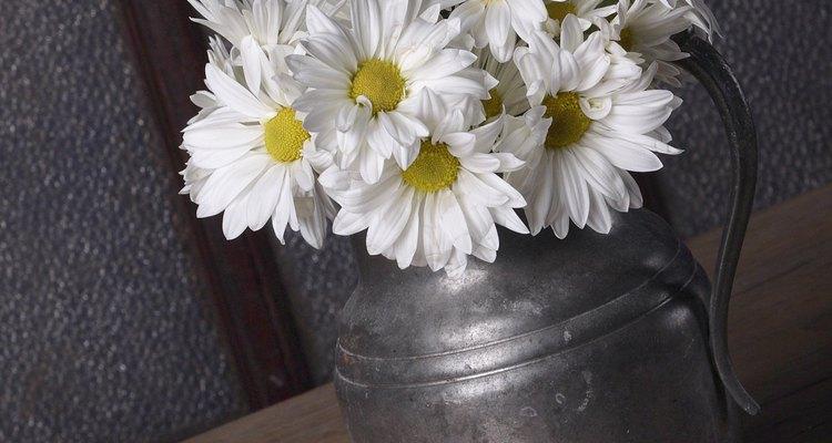 Prolonga la frescura de tus flores recién cortadas.