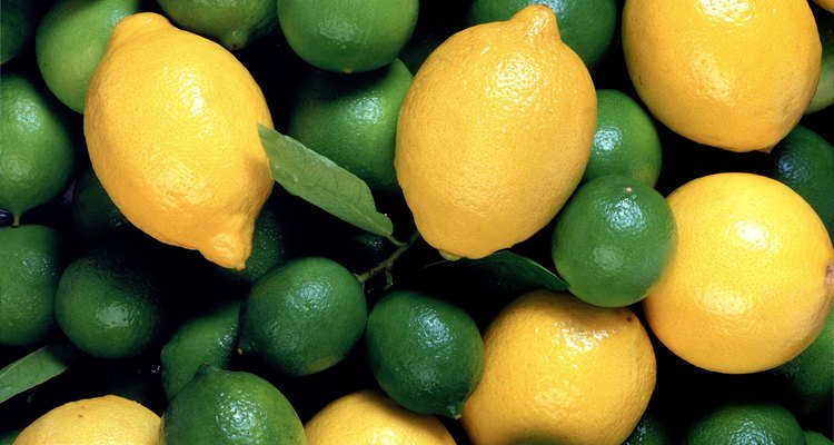 As folhas de limão kaffir -- também chamado de magrood ou makrut no Sudeste Asiático -- adicionam notas cítricas em sopas, saladas, molhos e frituras