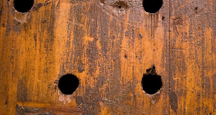 Os preenchimentos de madeira ajudam a proteger e fortalecer o interior da madeira podre