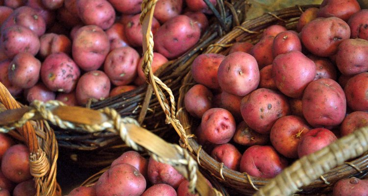Baskets full of small red new potatoes